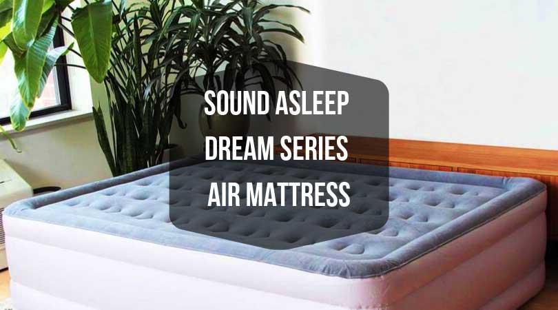 SoundASleep Dream Series Air Mattress Review - The top ...